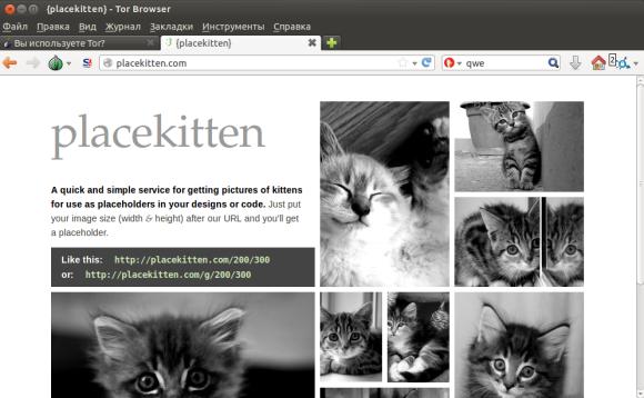 Безобидный сайт с котиками
