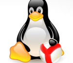 версия Яндекс.Браузера под Линукс