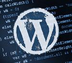Миниатюра к статье Как подключать скрипт в WordPress на страницу правильно